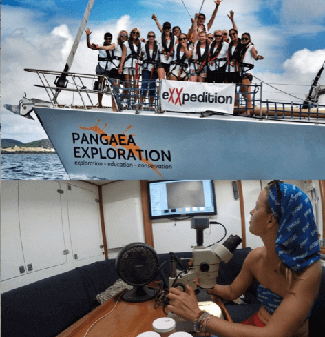 [pictures on board eXXpedition voyage]